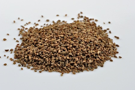 A Small Pile Of Celery Seeds Photo Foodwrite Ltd